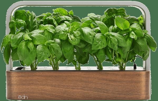 The ēdn SmallGarden:: HomeKit-Indoor-Garden